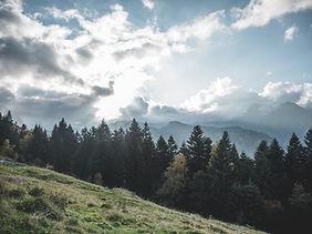 Alpe luchtpartij.jpg