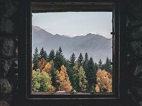 Alpe raam bos.jpg