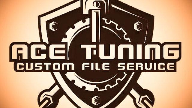 stage 2 petrol TURBO tuning file + addons