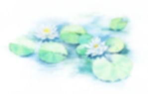 家族葬 花*花|兵庫県尼崎市武庫之荘の葬儀社