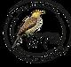 Logo El-Pitio-Tour.png