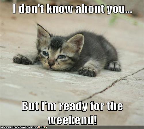 weekend-cat1