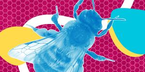 robo-bees-1200x600