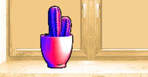 cactus-setting-1
