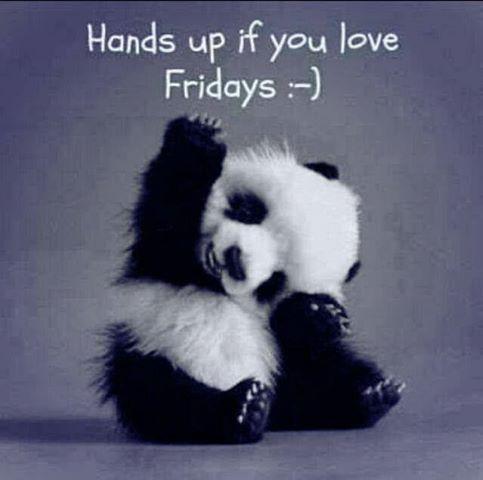 friday_panda
