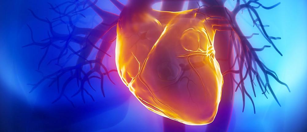 regenerate-damaged-hearts