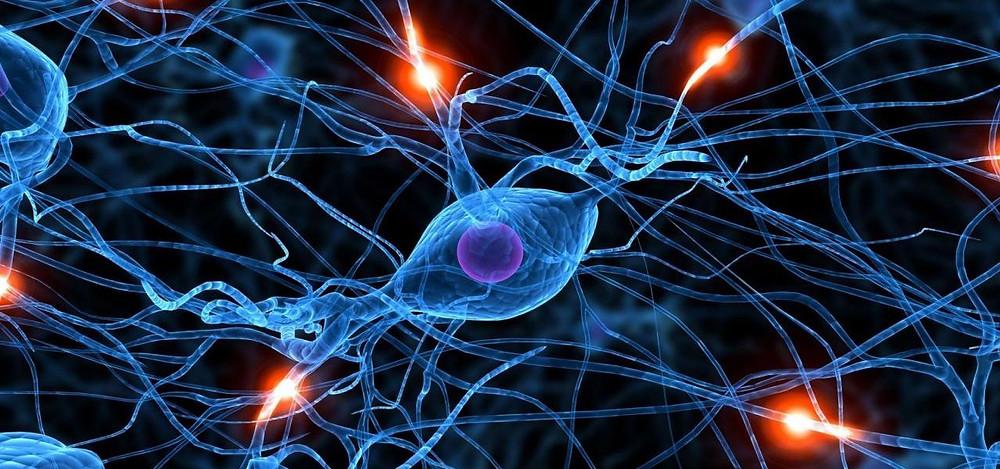neuron-wallpapers-1-1280x600