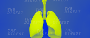 lab-grown-lungs-1400x600