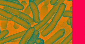 bacterial-factories-bulletproof-fabric-768x403