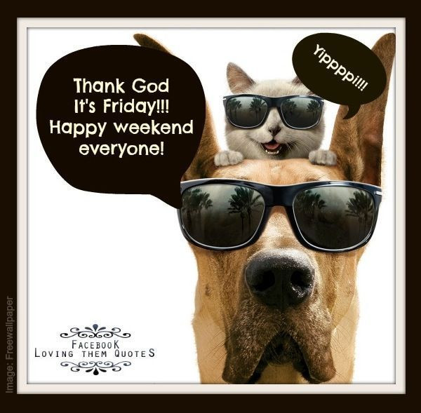231644-thank-god-it-s-friday-happy-weekend-everyone