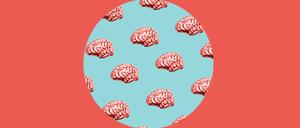 mini-brains-1400x600