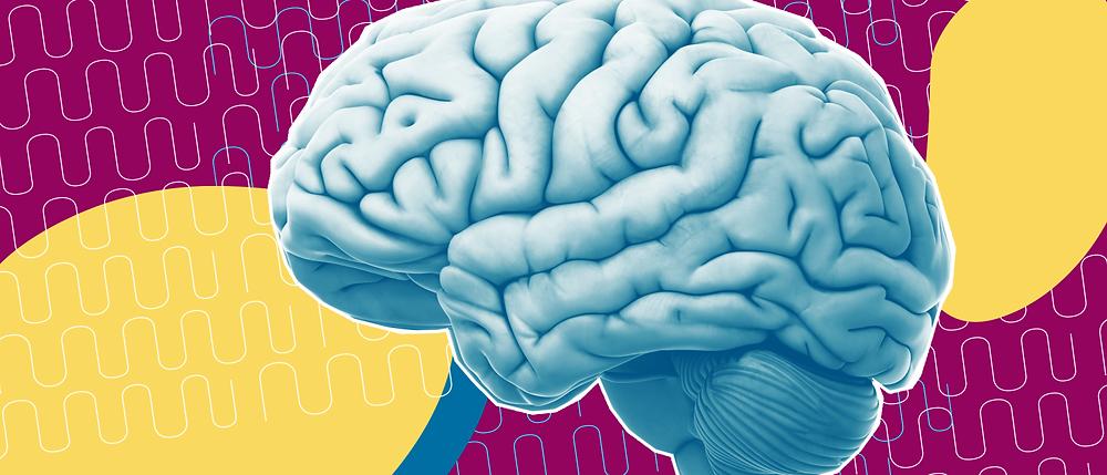 brain-storage-1400x600