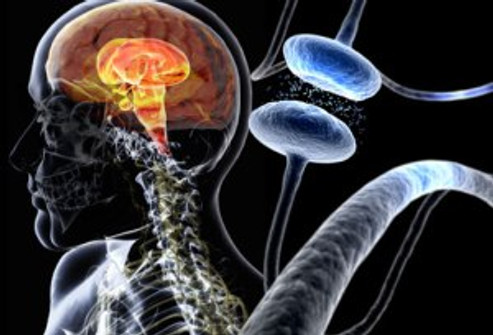 493x335_parkinsons_disease_overview_slideshow