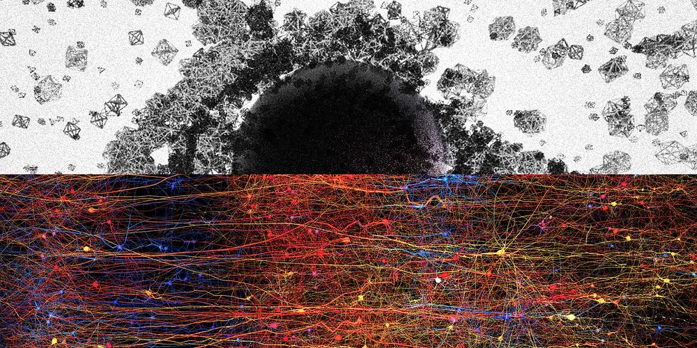 pr-neuroscience-news-topology-blue-brain-project-markram-1200x600