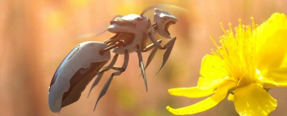 robot-bees