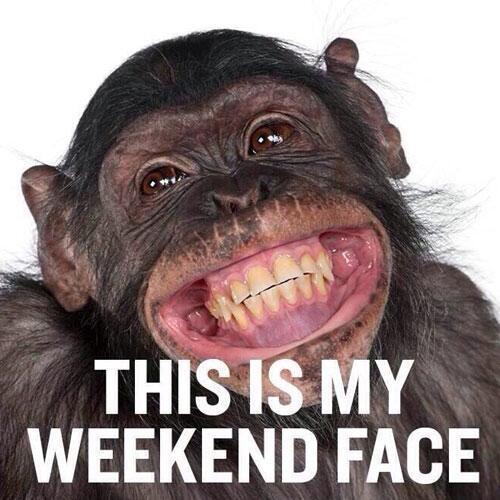 weekendmonkey