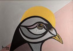 Urban Pigeons I