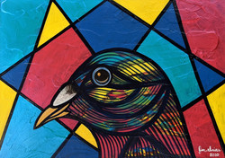 Primary Pigeons II