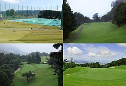 golf_colage.jpg