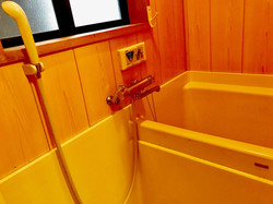 小さいながらもシャワーと浴室を完備