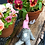 Thumbnail: Bjorn the Outdoor Gnome with Pink Hat in Repose