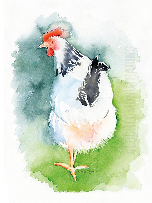 Clarissa the Light Sussex Greetings Card