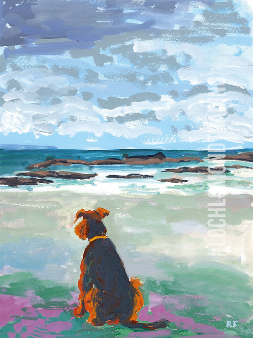 Lexie the Airedale at Sanna Beach Greetings Card