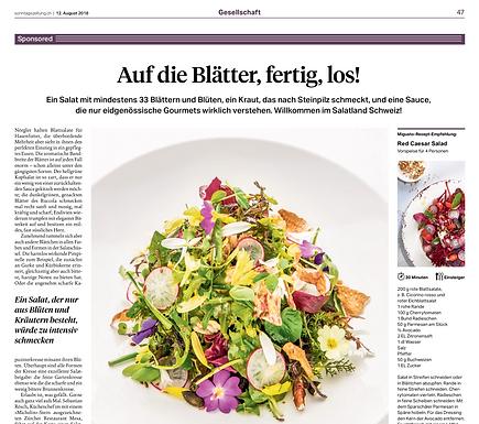 Auf die Blätter, fertig, los! / Sonntagszeitung.ch
