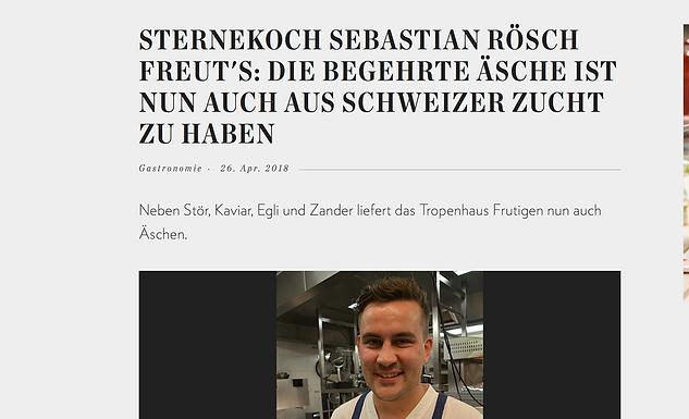 Die begehrte Äsche ist nun auch aus Schweizer Zucht zu haben / Hotellerie-Gastronomie.ch
