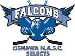 NASC_Falcons(outlined)_logo.jpg