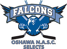 NASC_Falcons(outlined)_logo.jpg