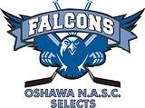 NASC_Falcons(outlined)_logo_edited.jpg