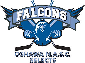 NASC_Falcons(outlined)_logo_edited.jpg