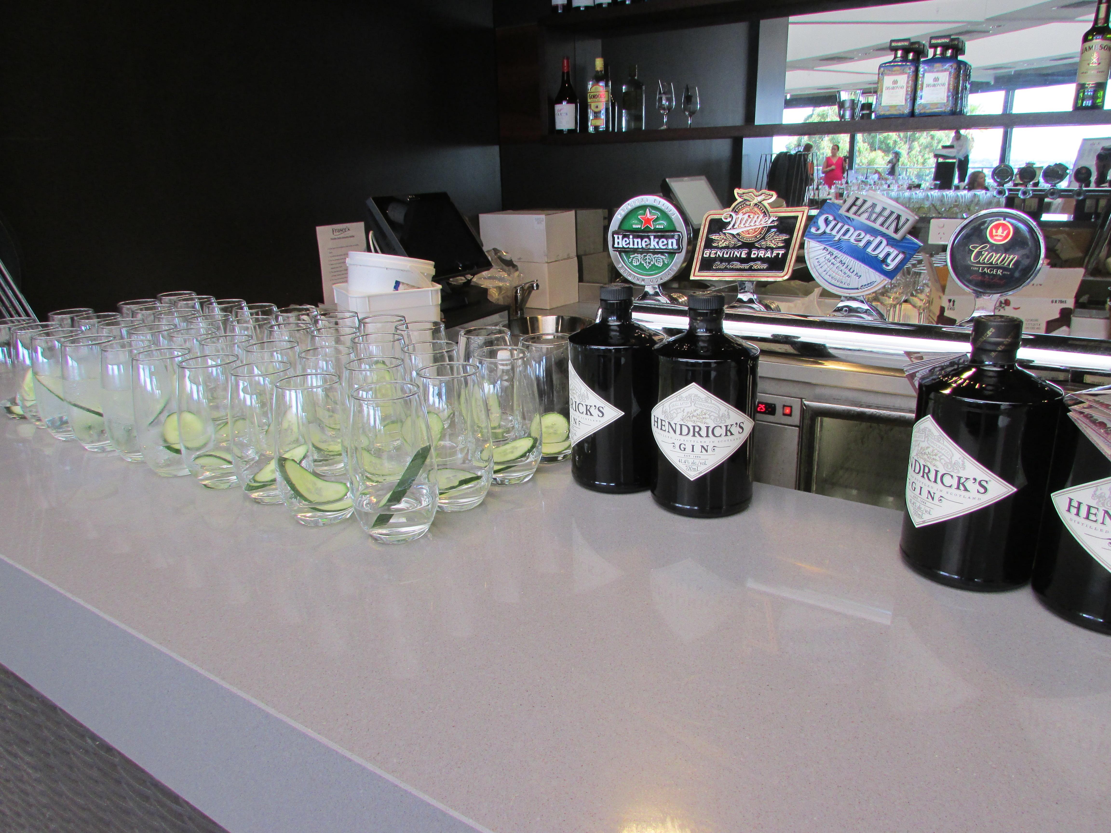 Hendricks Gin, Tonic & Cucumber