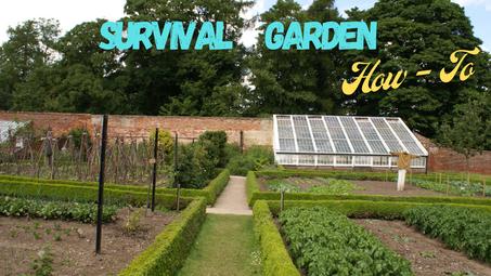 Survival Garden How-To