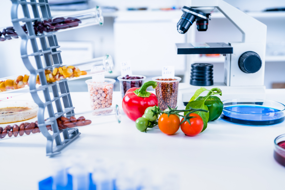 Table with food items and microscope for science studies