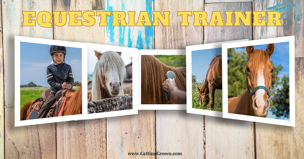 Equestrian Trainer collage of images