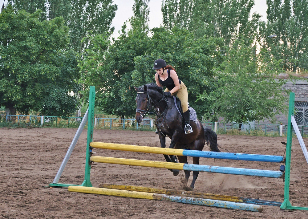 Woman jumping hurdles while riding a horse
