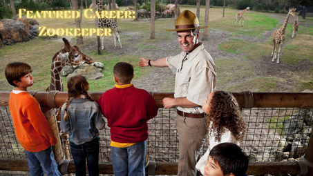 Featured Career: Zookeeper