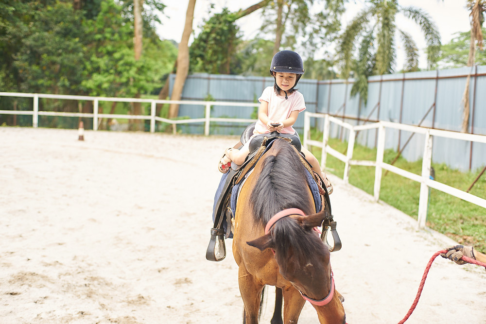 Young girl training to ride a horse