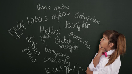 Can Learning a New Language Improve your Job Chances?