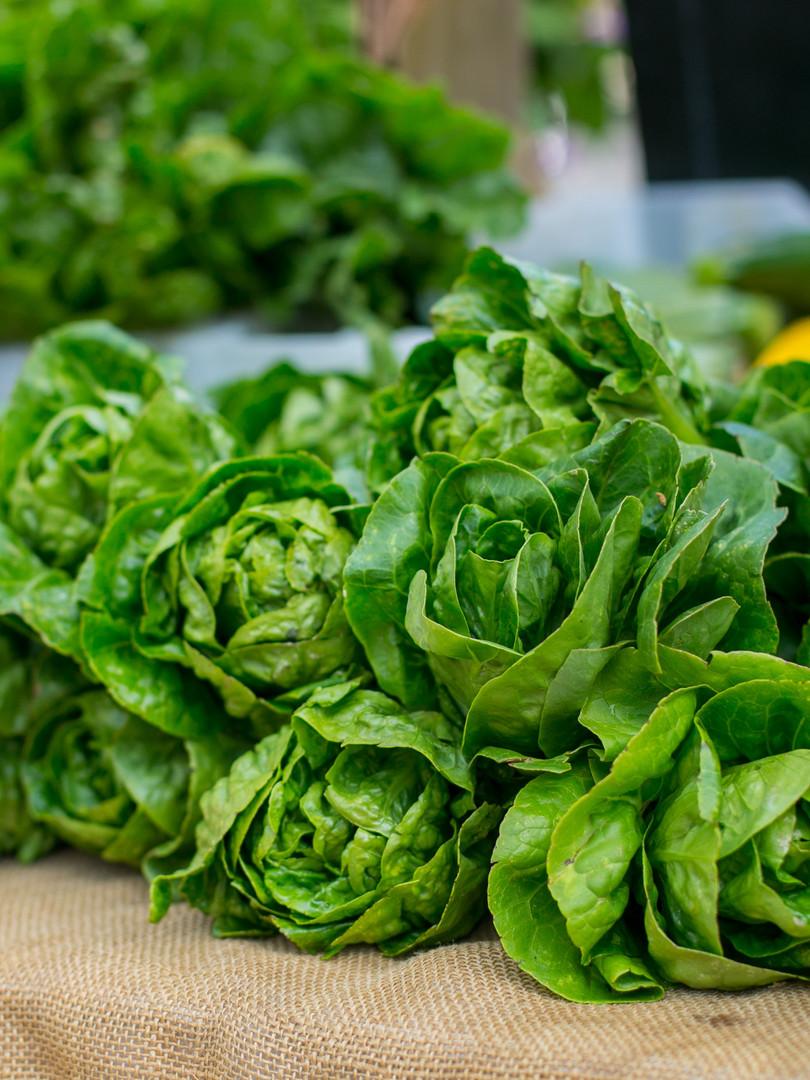 Sonoma Valley_Farmers Market.jpg