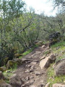 Sonoma-Valley-Regional-Park 5.jpg