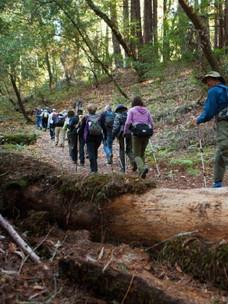 Sonoma-Valley-Regional-Park 3_edited.jpg