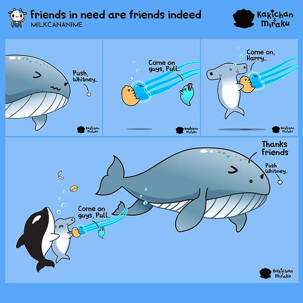 Whale Birth Kakichan and Mir