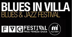 BluesInVilla.FVG festival.jpg