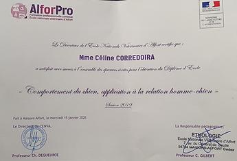 Ethologue Céline Corredoira
