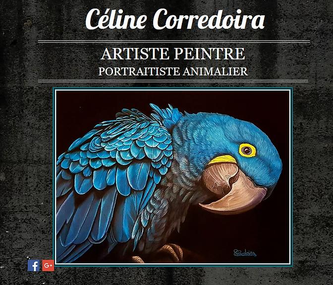 Portraits animaliers artiste peintre Céline Corredoira