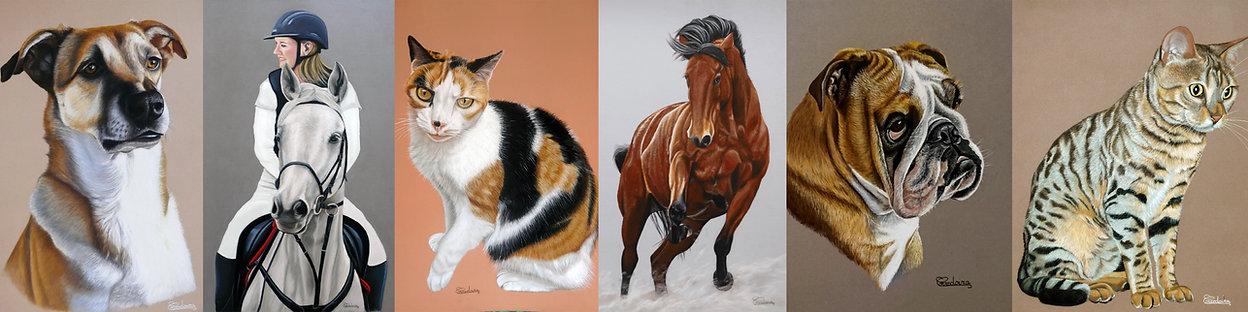 Portraits animaliers artiste peintre par Céline Corredoira