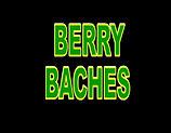 BERRY BACHES n .jpg